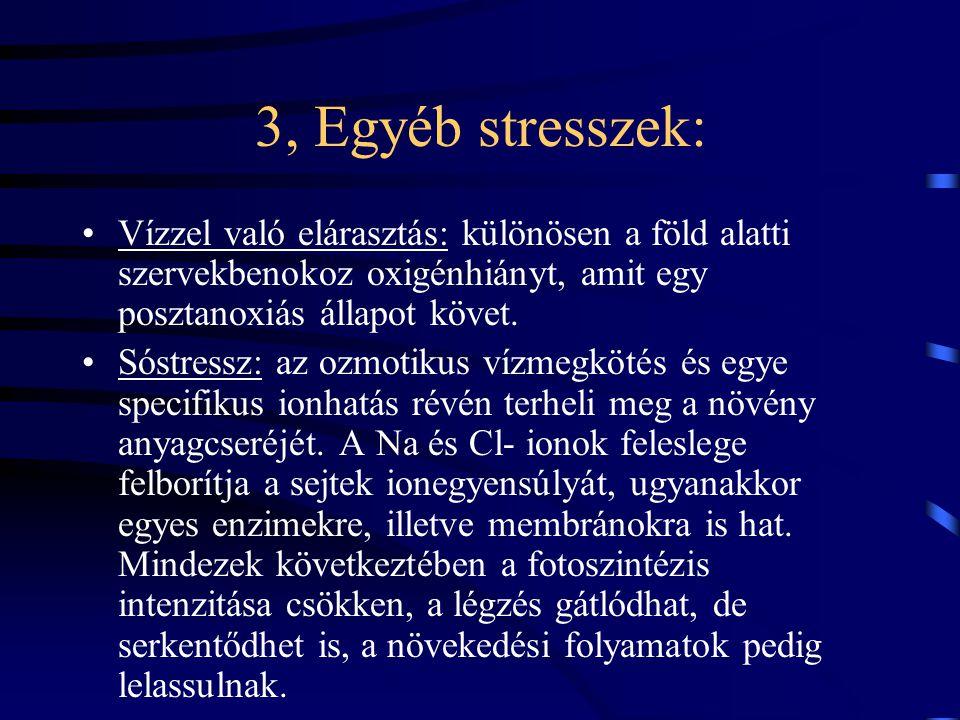 3, Egyéb stresszek: Vízzel való elárasztás: különösen a föld alatti szervekbenokoz oxigénhiányt, amit egy posztanoxiás állapot követ.