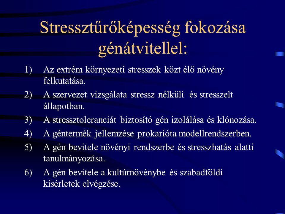 Stressztűrőképesség fokozása génátvitellel: 1)Az extrém környezeti stresszek közt élő növény felkutatása.