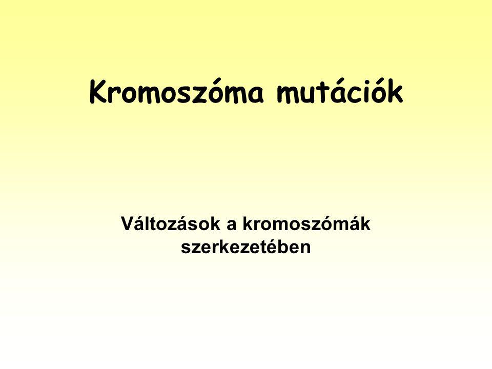 A kromoszóma mutációk fogalma Kromoszóma mutációk azok a folyamatok, melyek kromoszóma részek átrendeződését, a kromoszómák számának megváltozását vagy akár az egész kromoszóma szerelvény számának változását eredményezik.