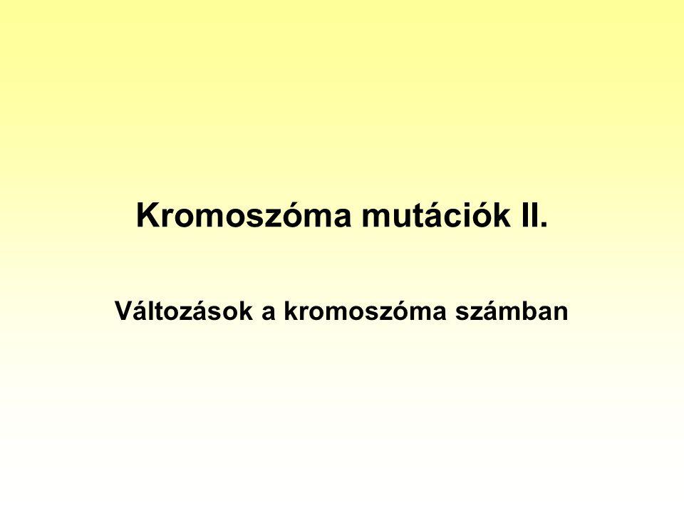 Kromoszóma mutációk II. Változások a kromoszóma számban