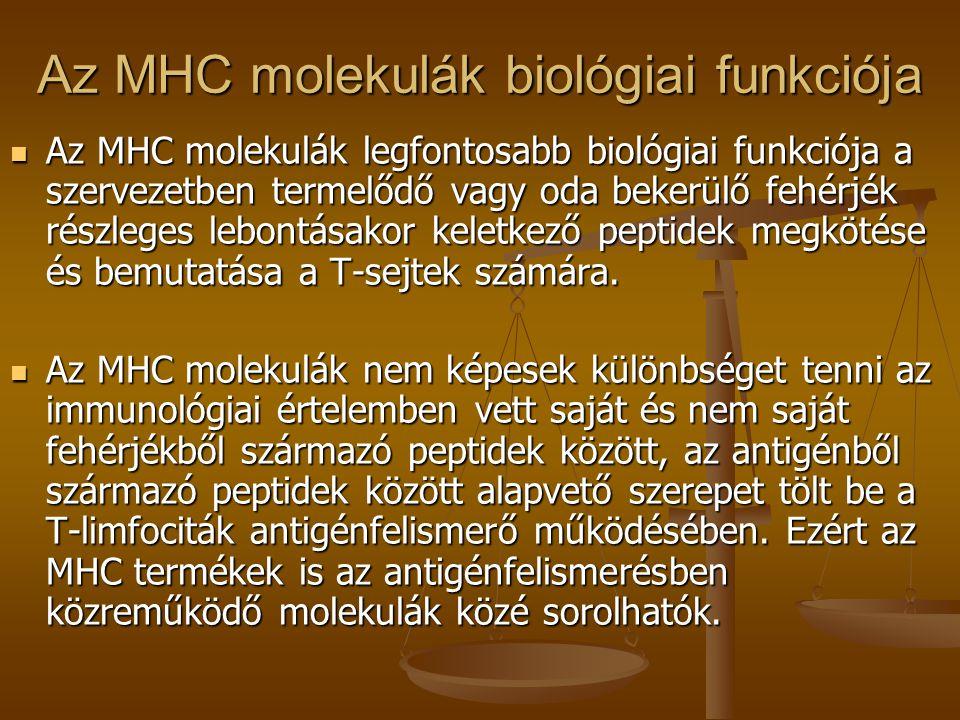 Az MHC molekulák biológiai funkciója Az MHC molekulák legfontosabb biológiai funkciója a szervezetben termelődő vagy oda bekerülő fehérjék részleges l