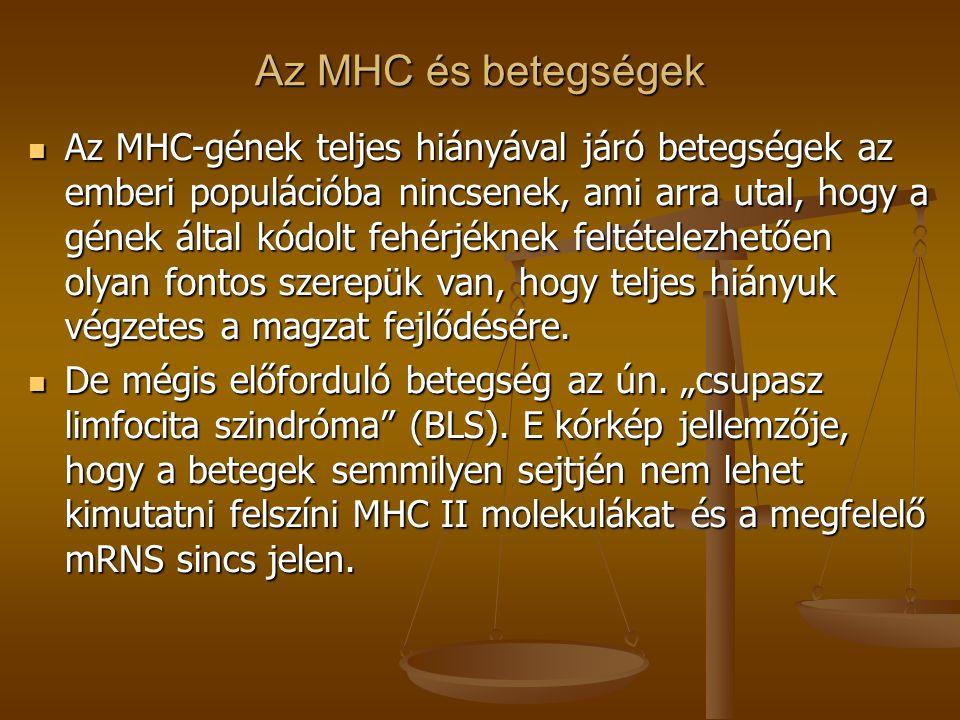 Az MHC és betegségek Az MHC-gének teljes hiányával járó betegségek az emberi populációba nincsenek, ami arra utal, hogy a gének által kódolt fehérjékn