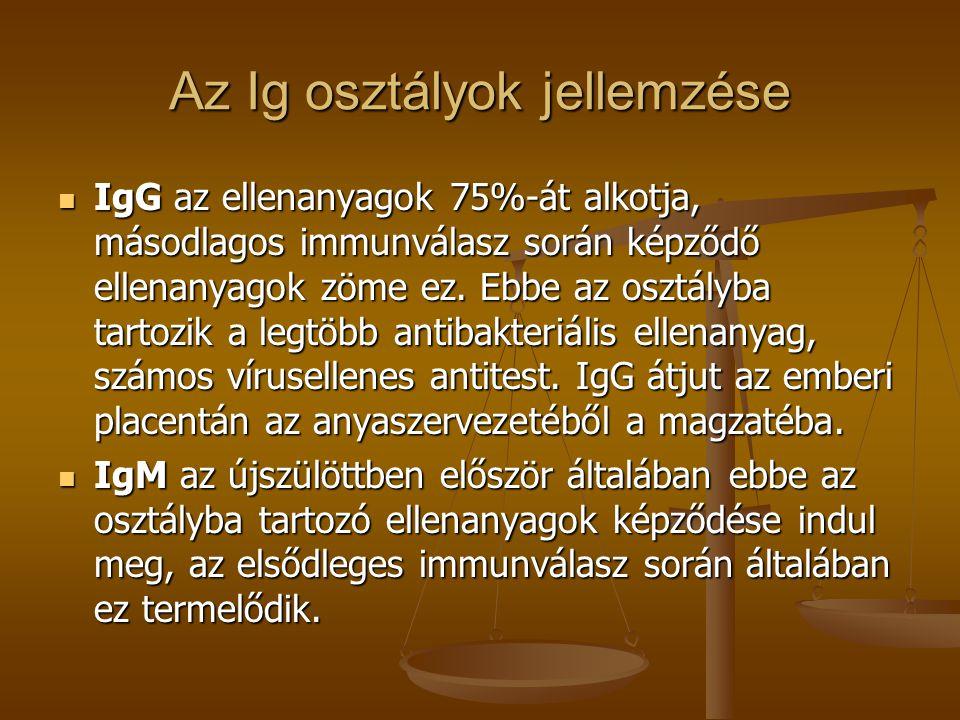 Az Ig osztályok jellemzése IgG az ellenanyagok 75%-át alkotja, másodlagos immunválasz során képződő ellenanyagok zöme ez. Ebbe az osztályba tartozik a