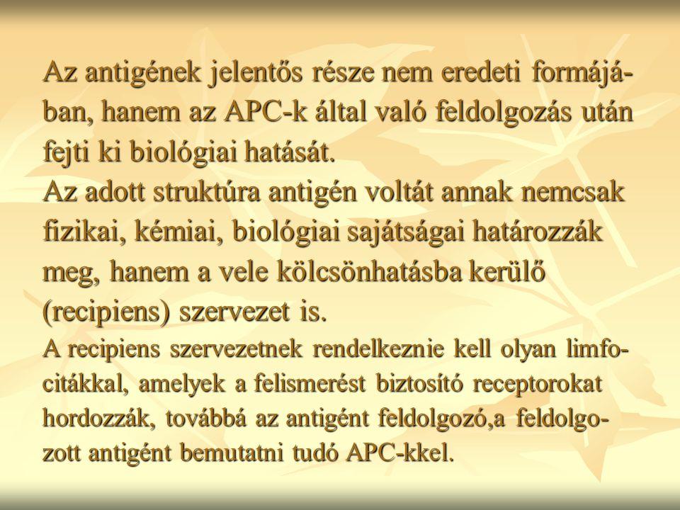 Az antigének jelentős része nem eredeti formájá- ban, hanem az APC-k által való feldolgozás után fejti ki biológiai hatását. Az adott struktúra antigé