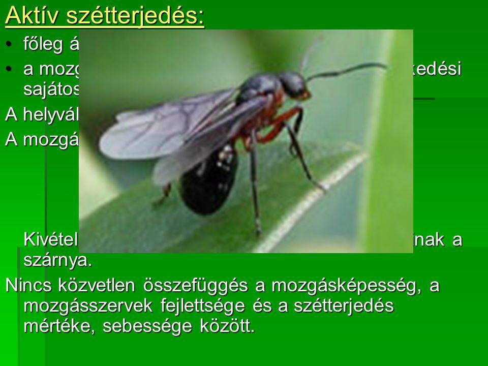 Aktív szétterjedés: főleg állatokra jellemzőfőleg állatokra jellemző a mozgásszervek alakja és funkciói, ill.
