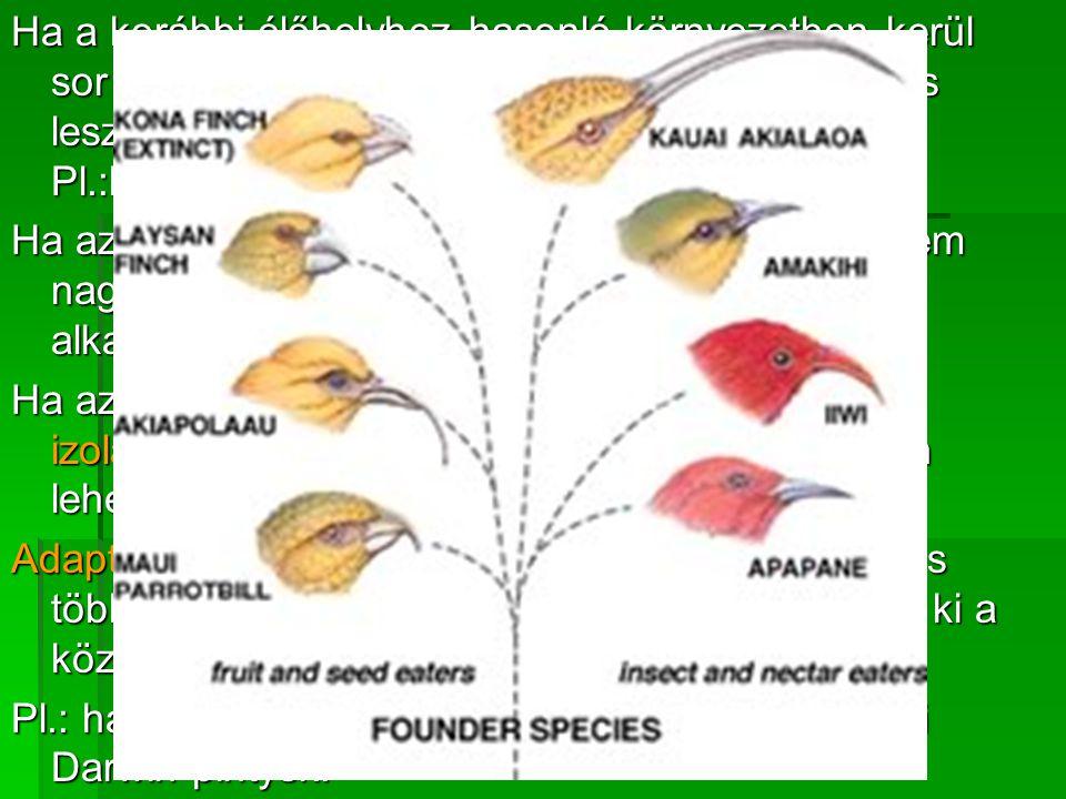Ha a korábbi élőhelyhez hasonló környezetben kerül sor a megtelepedésre, akkor az gyors és sikeres lesz, és újabb szétterjedésnek lehet alapja.