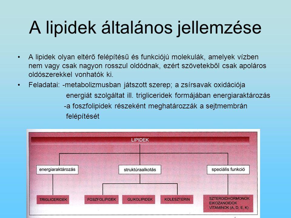 A lipidek általános jellemzése A lipidek olyan eltérő felépítésű és funkciójú molekulák, amelyek vízben nem vagy csak nagyon rosszul oldódnak, ezért s