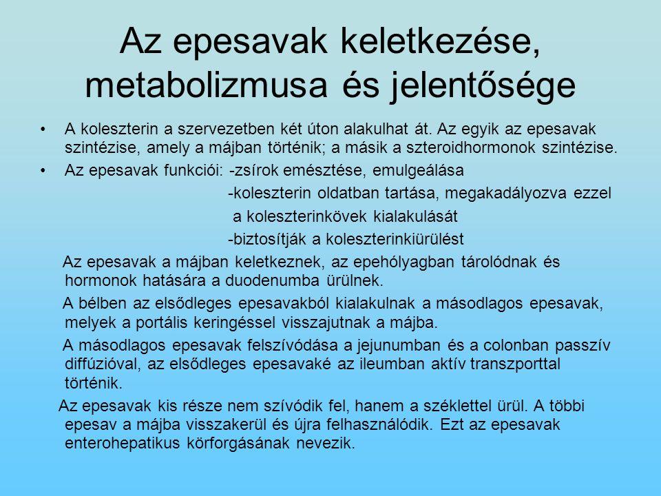 Az epesavak keletkezése, metabolizmusa és jelentősége A koleszterin a szervezetben két úton alakulhat át. Az egyik az epesavak szintézise, amely a máj