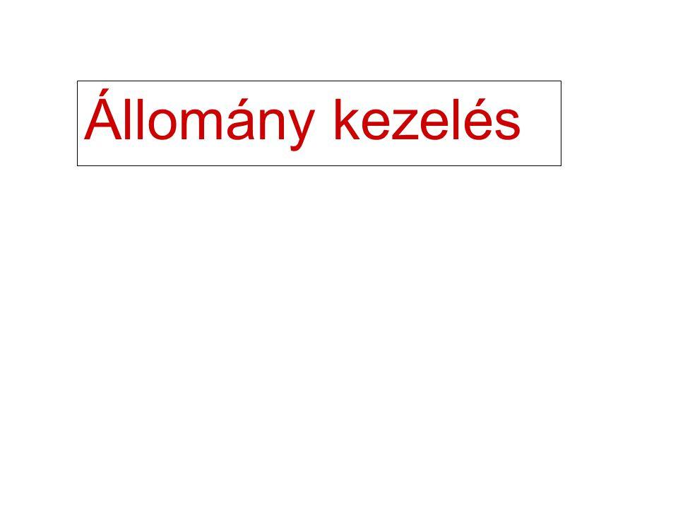 2 Állományok Az állományok háttértárolón vannak Adatokat tartalmaznak Rekordok==>Sorok Mezők==>Adat elemek a sorokon belül
