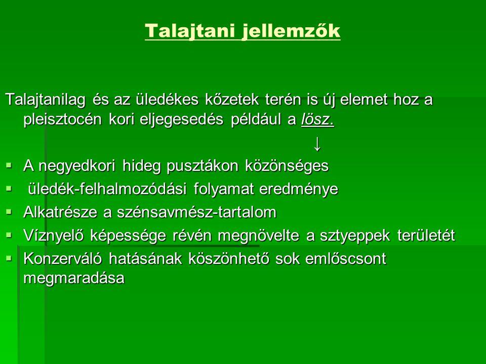 Talajtani jellemzők Talajtanilag és az üledékes kőzetek terén is új elemet hoz a pleisztocén kori eljegesedés például a lösz.