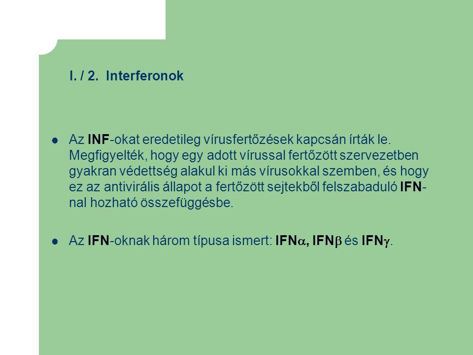 I. / 2. Interferonok Az INF-okat eredetileg vírusfertőzések kapcsán írták le. Megfigyelték, hogy egy adott vírussal fertőzött szervezetben gyakran véd