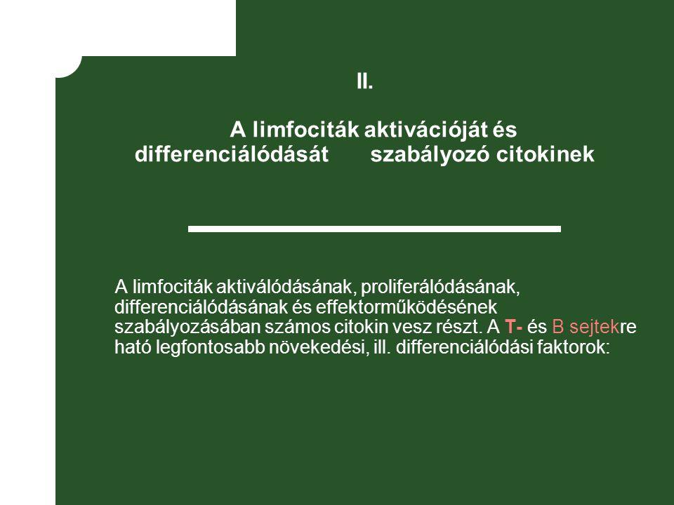 II. A limfociták aktivációját és differenciálódását szabályozó citokinek A limfociták aktiválódásának, proliferálódásának, differenciálódásának és eff