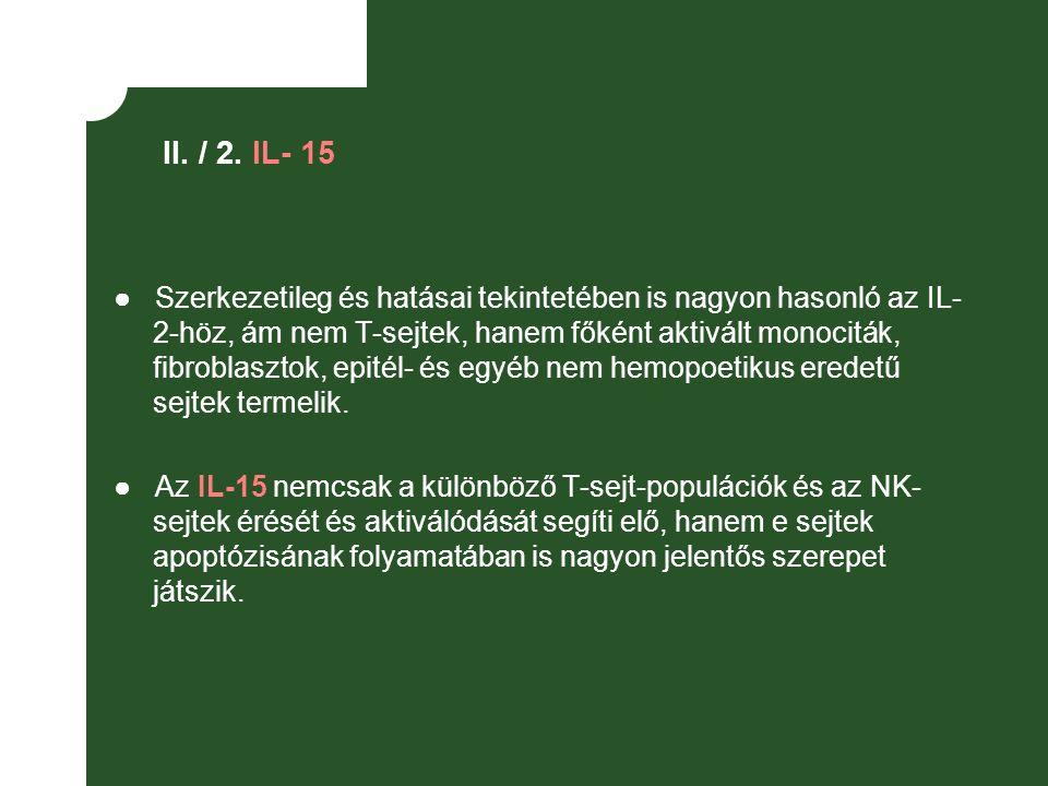 II. / 2. IL- 15 ● Szerkezetileg és hatásai tekintetében is nagyon hasonló az IL- 2-höz, ám nem T-sejtek, hanem főként aktivált monociták, fibroblaszto