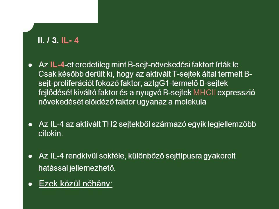 II. / 3. IL- 4 ● Az IL-4-et eredetileg mint B-sejt-növekedési faktort írták le. Csak később derült ki, hogy az aktivált T-sejtek által termelt B- sejt