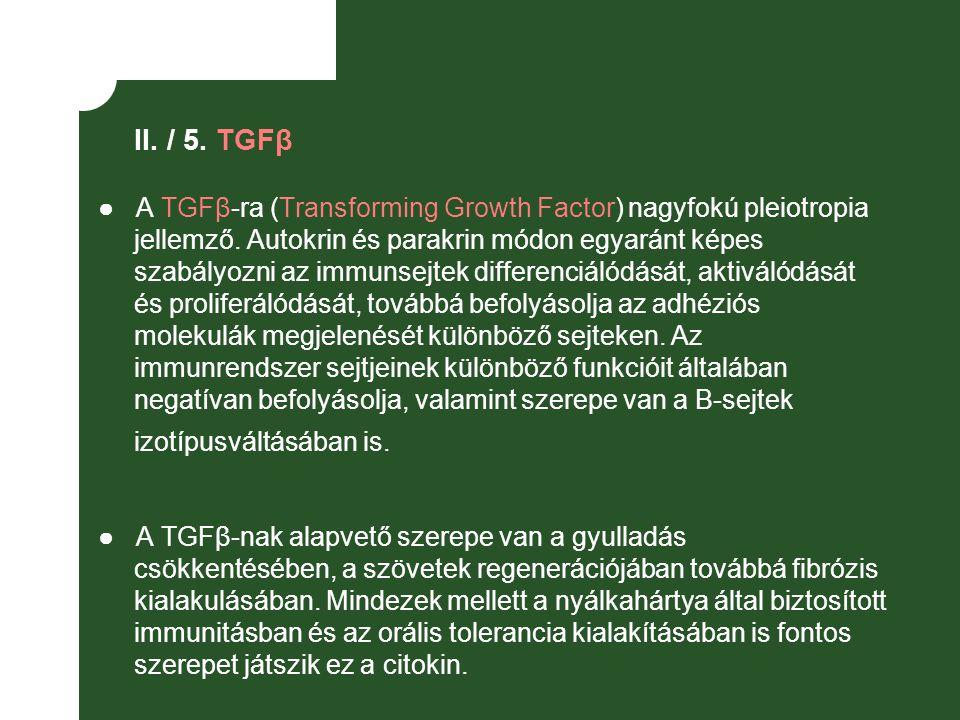 II. / 5. TGFβ ● A TGFβ-ra (Transforming Growth Factor) nagyfokú pleiotropia jellemző. Autokrin és parakrin módon egyaránt képes szabályozni az immunse