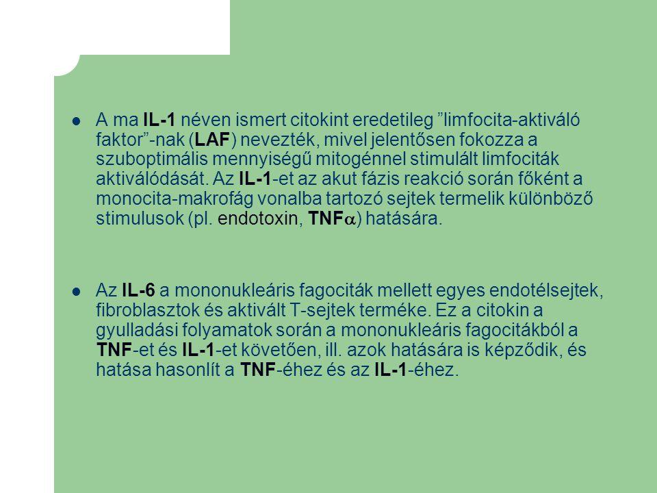 """A ma IL-1 néven ismert citokint eredetileg """"limfocita-aktiváló faktor""""-nak (LAF) nevezték, mivel jelentősen fokozza a szuboptimális mennyiségű mitogén"""