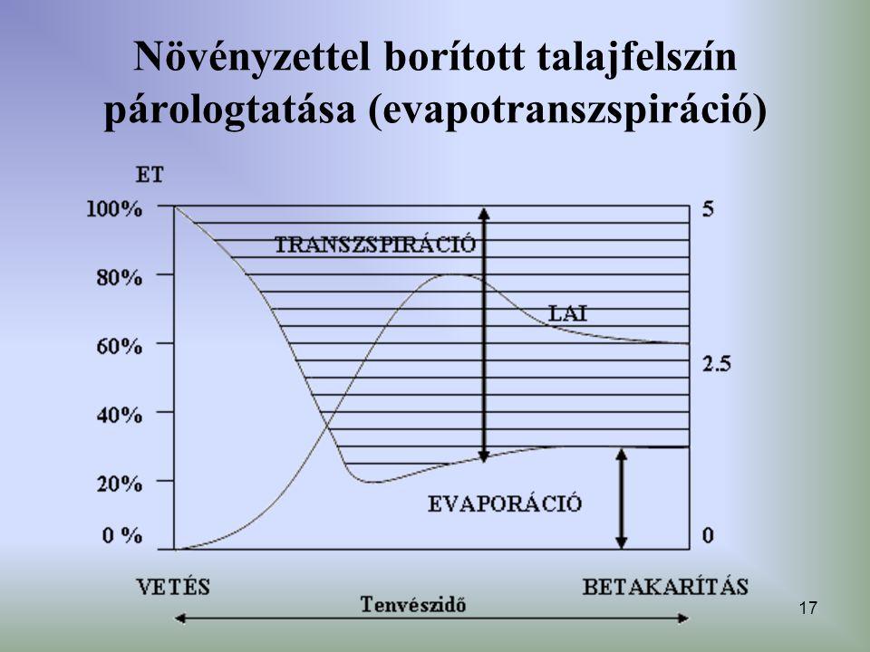 17 Növényzettel borított talajfelszín párologtatása (evapotranszspiráció)