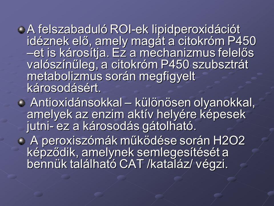 A felszabaduló ROI-ek lipidperoxidációt idéznek elő, amely magát a citokróm P450 –et is károsítja.