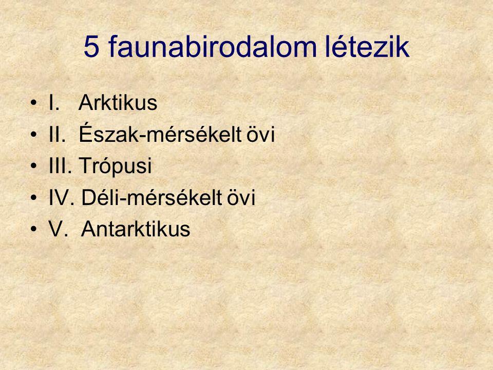 5 faunabirodalom létezik I.Arktikus II. Észak-mérsékelt övi III.