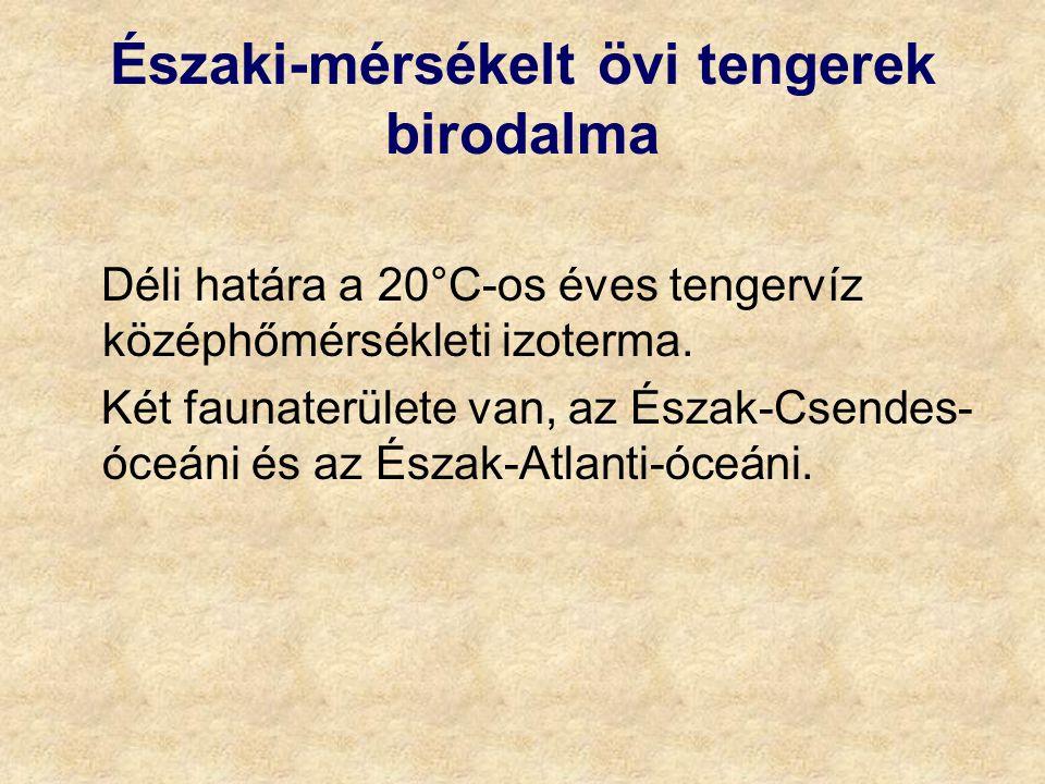 Északi-mérsékelt övi tengerek birodalma Déli határa a 20°C-os éves tengervíz középhőmérsékleti izoterma.
