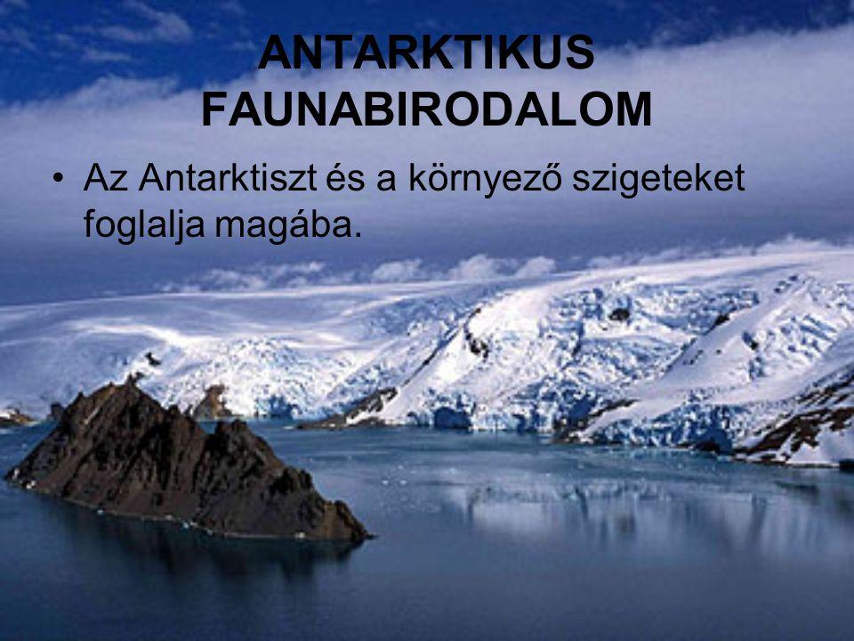 Az Antarktiszt és a környező szigeteket foglalja magába.
