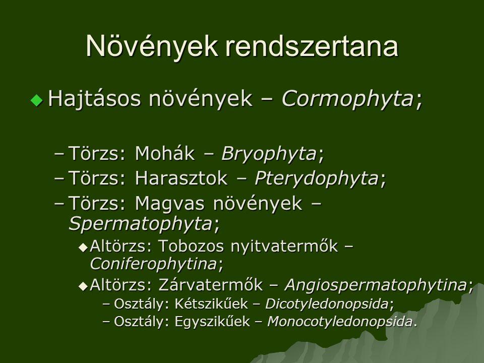  Hajtásos növények – Cormophyta; –Törzs: Mohák – Bryophyta; –Törzs: Harasztok – Pterydophyta; –Törzs: Magvas növények – Spermatophyta;  Altörzs: Tobozos nyitvatermők – Coniferophytina;  Altörzs: Zárvatermők – Angiospermatophytina; –Osztály: Kétszikűek – Dicotyledonopsida; –Osztály: Egyszikűek – Monocotyledonopsida.
