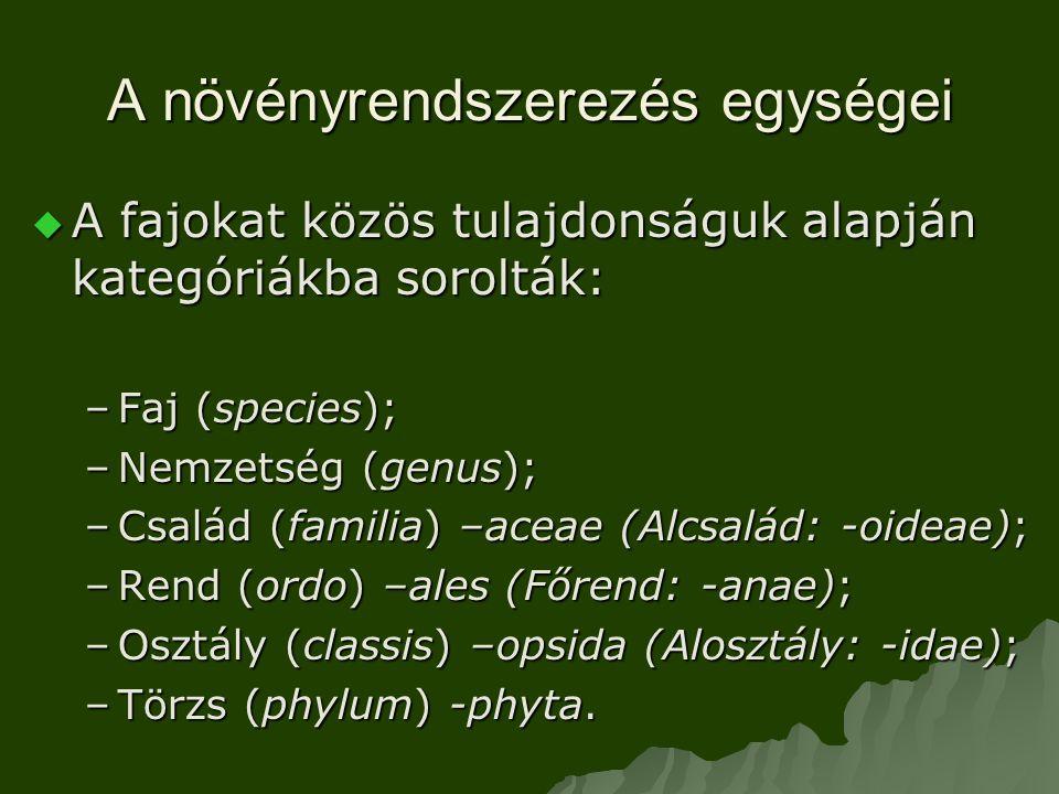 A növényrendszerezés egységei  A fajokat közös tulajdonságuk alapján kategóriákba sorolták: –Faj (species); –Nemzetség (genus); –Család (familia) –aceae (Alcsalád: -oideae); –Rend (ordo) –ales (Főrend: -anae); –Osztály (classis) –opsida (Alosztály: -idae); –Törzs (phylum) -phyta.