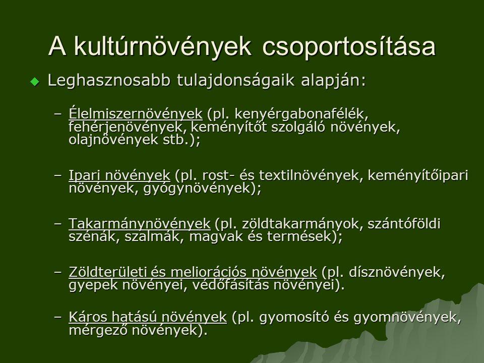 A kultúrnövények csoportosítása  Leghasznosabb tulajdonságaik alapján: –Élelmiszernövények (pl.