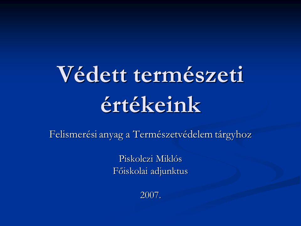 Védett természeti értékeink Felismerési anyag a Természetvédelem tárgyhoz Piskolczi Miklós Főiskolai adjunktus 2007.