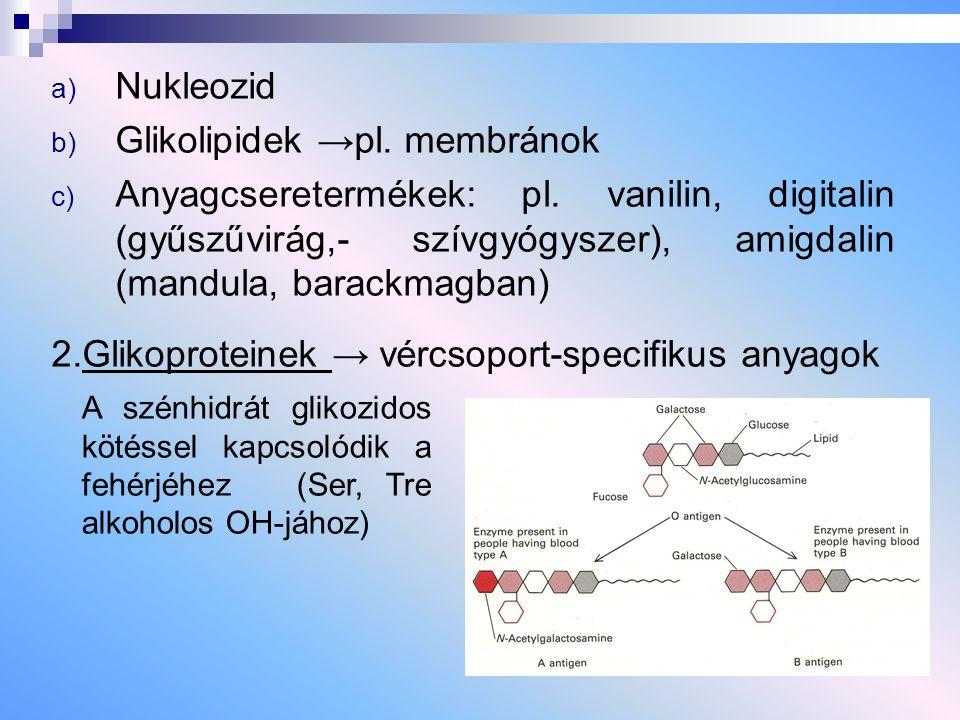 a) Nukleozid b) Glikolipidek →pl. membránok c) Anyagcseretermékek: pl. vanilin, digitalin (gyűszűvirág,- szívgyógyszer), amigdalin (mandula, barackmag