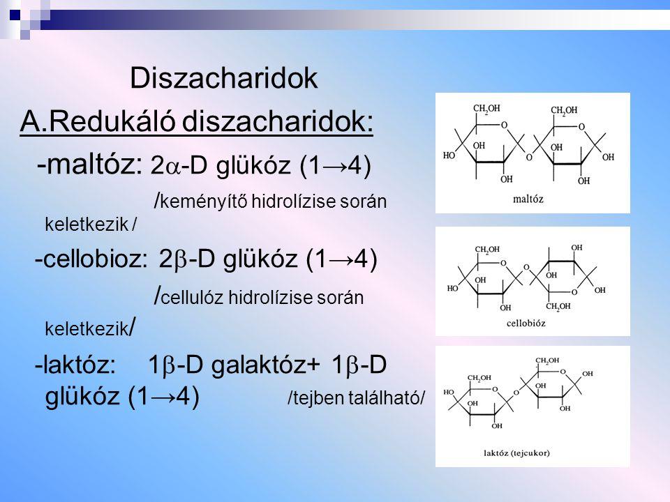 Diszacharidok A.Redukáló diszacharidok: -maltóz: 2  -D glükóz (1→4) / keményítő hidrolízise során keletkezik / -cellobioz: 2  -D glükóz (1→4) / cell