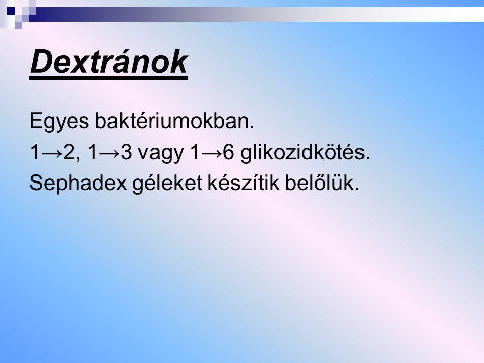 Dextránok Egyes baktériumokban. 1→2, 1→3 vagy 1→6 glikozidkötés. Sephadex géleket készítik belőlük.