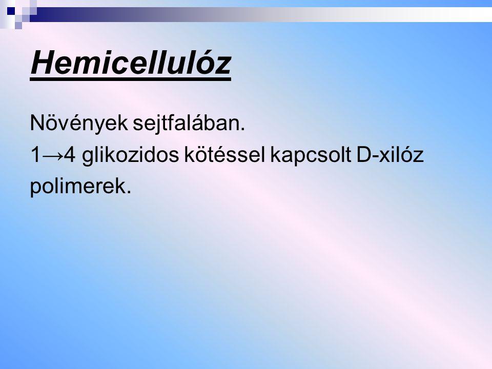 Hemicellulóz Növények sejtfalában. 1→4 glikozidos kötéssel kapcsolt D-xilóz polimerek.