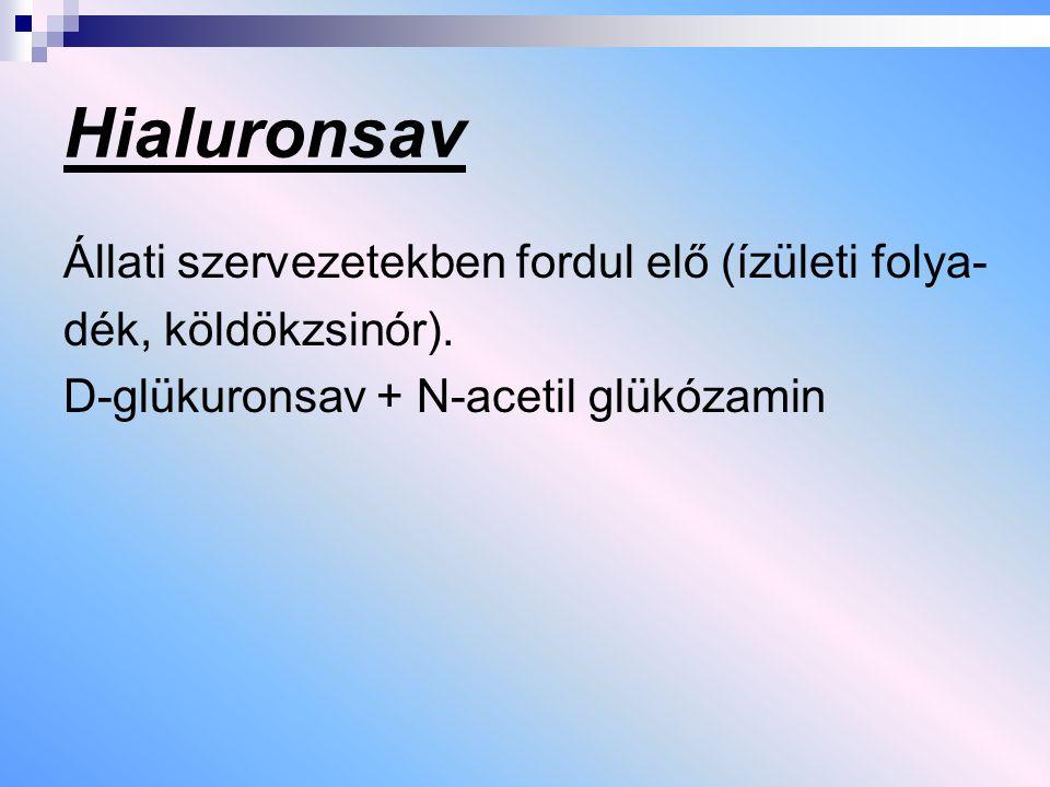 Hialuronsav Állati szervezetekben fordul elő (ízületi folya- dék, köldökzsinór). D-glükuronsav + N-acetil glükózamin