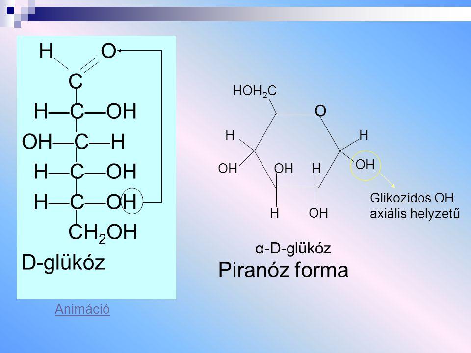 Hialuronsav Állati szervezetekben fordul elő (ízületi folya- dék, köldökzsinór).