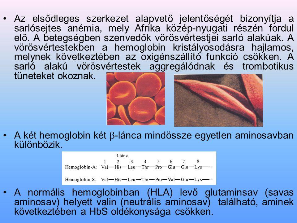 Az elsődleges szerkezet alapvető jelentőségét bizonyítja a sarlósejtes anémia, mely Afrika közép-nyugati részén fordul elő. A betegségben szenvedők vö