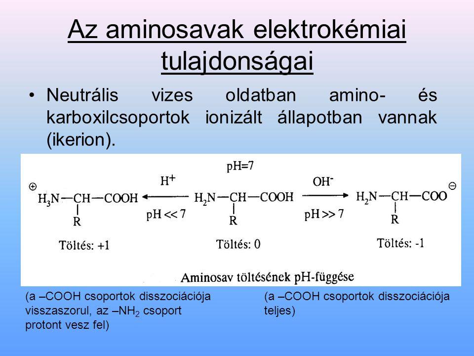 Az aminosavak elektrokémiai tulajdonságai Neutrális vizes oldatban amino- és karboxilcsoportok ionizált állapotban vannak (ikerion). (a –COOH csoporto