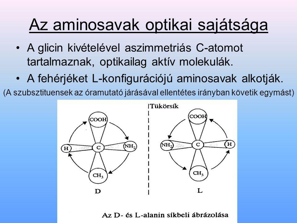 Elsődleges (primer) szerkezet Az elsődleges (primer) szerkezetet az aminosavak kapcsolódási sorrendje határozza meg, de következtetni lehet belőle a további szerkezeti szintekre.
