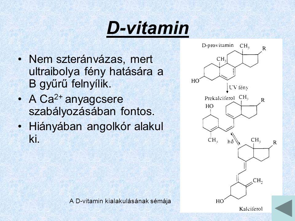 D-vitamin Nem szteránvázas, mert ultraibolya fény hatására a B gyűrű felnyílik.