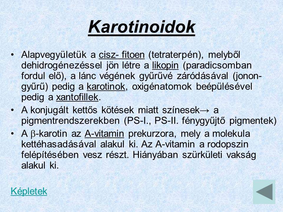 Karotinoidok Alapvegyületük a cisz- fitoen (tetraterpén), melyből dehidrogénezéssel jön létre a likopin (paradicsomban fordul elő), a lánc végének gyű