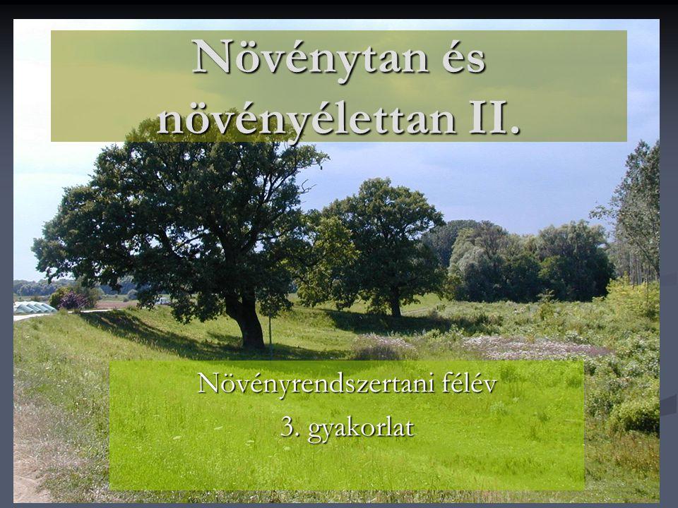 Növénytan és növényélettan II. Növényrendszertani félév 3. gyakorlat