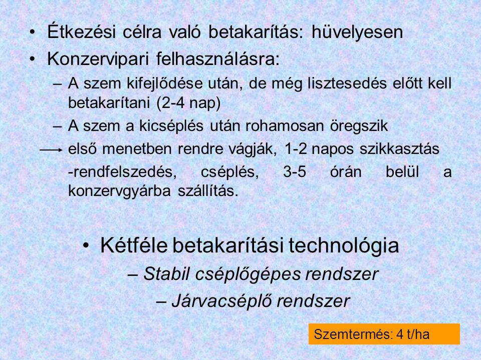 Étkezési célra való betakarítás: hüvelyesen Konzervipari felhasználásra: –A szem kifejlődése után, de még lisztesedés előtt kell betakarítani (2-4 nap