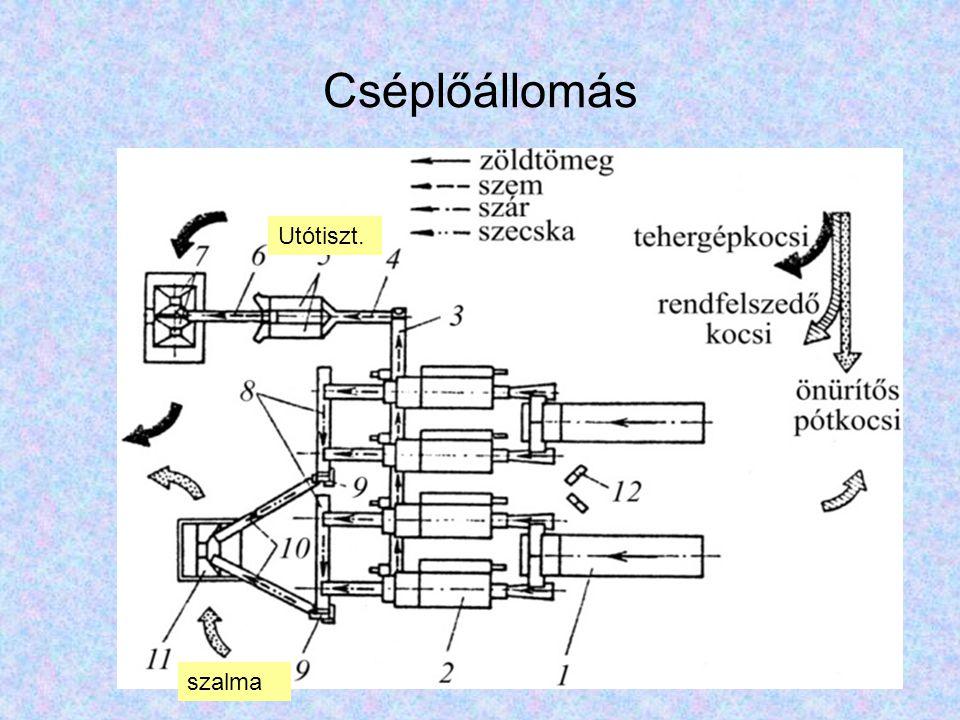 Paradicsom-előfeldolgozó gépsor 1-fogadó medence; 2-felhordószalag; 3-vízfüggönyös előmosó; 4- selejtező;5-kefés mosás;6-elosztó szalagok,7-válogatószalagok (szín szerinti v.); 8-zúzó magozó; 9-melléktermék P=10-15 t/h