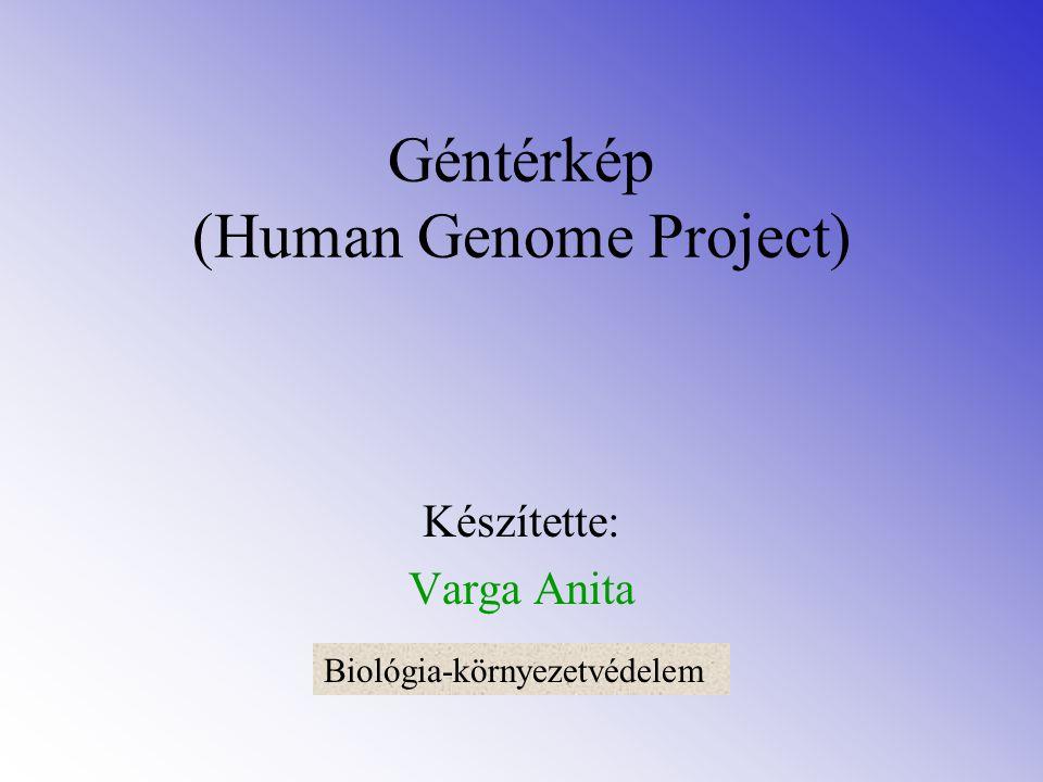 Géntérkép (Human Genome Project) Készítette: Varga Anita Biológia-környezetvédelem