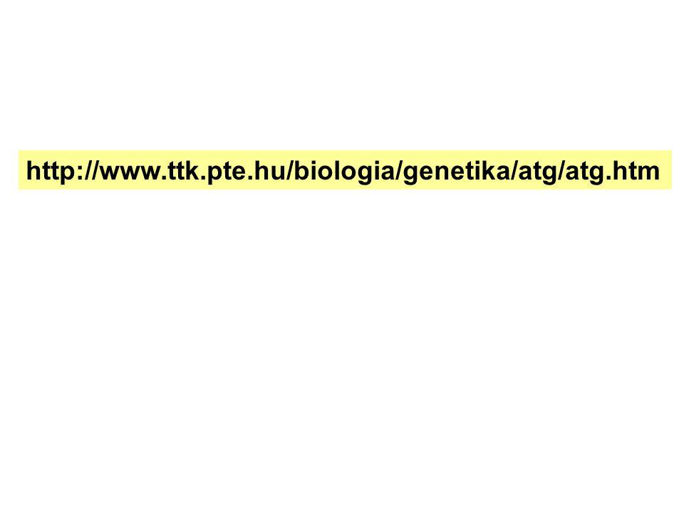 http://www.ttk.pte.hu/biologia/genetika/atg/atg.htm