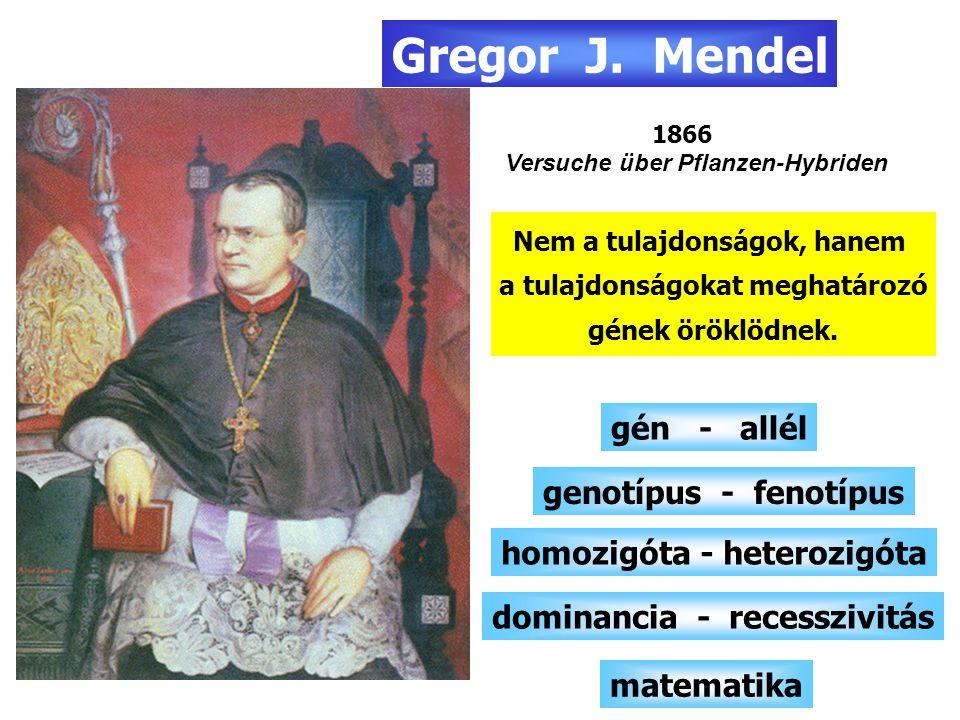 Sejttan - Genetika sejtelmélet 1838 - 1839 M.J.Schleiden és T.