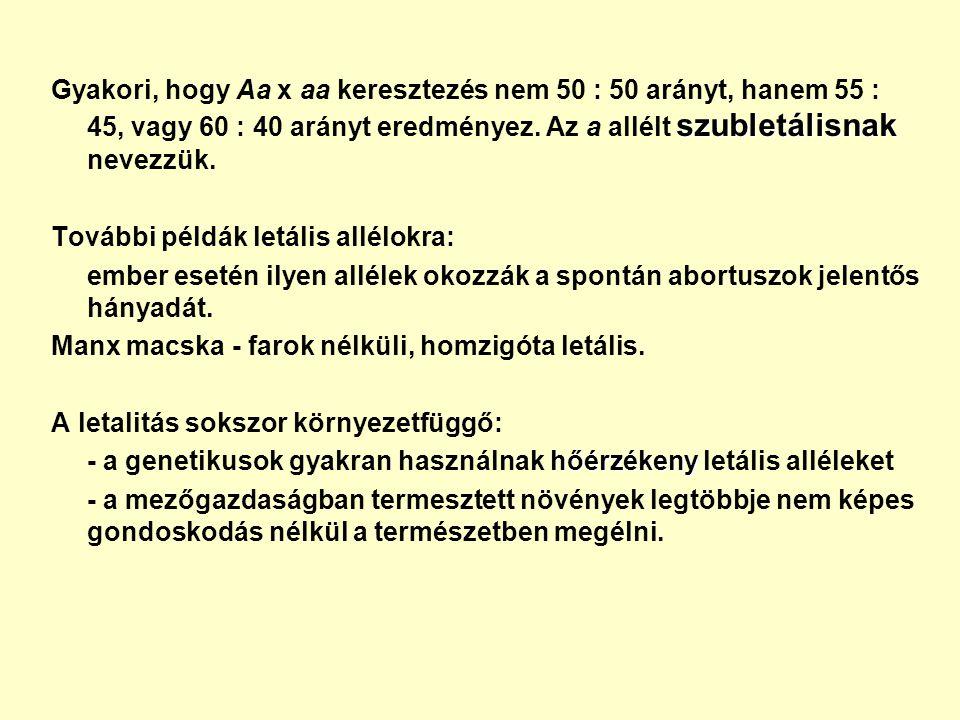 szubletálisnak Gyakori, hogy Aa x aa keresztezés nem 50 : 50 arányt, hanem 55 : 45, vagy 60 : 40 arányt eredményez.