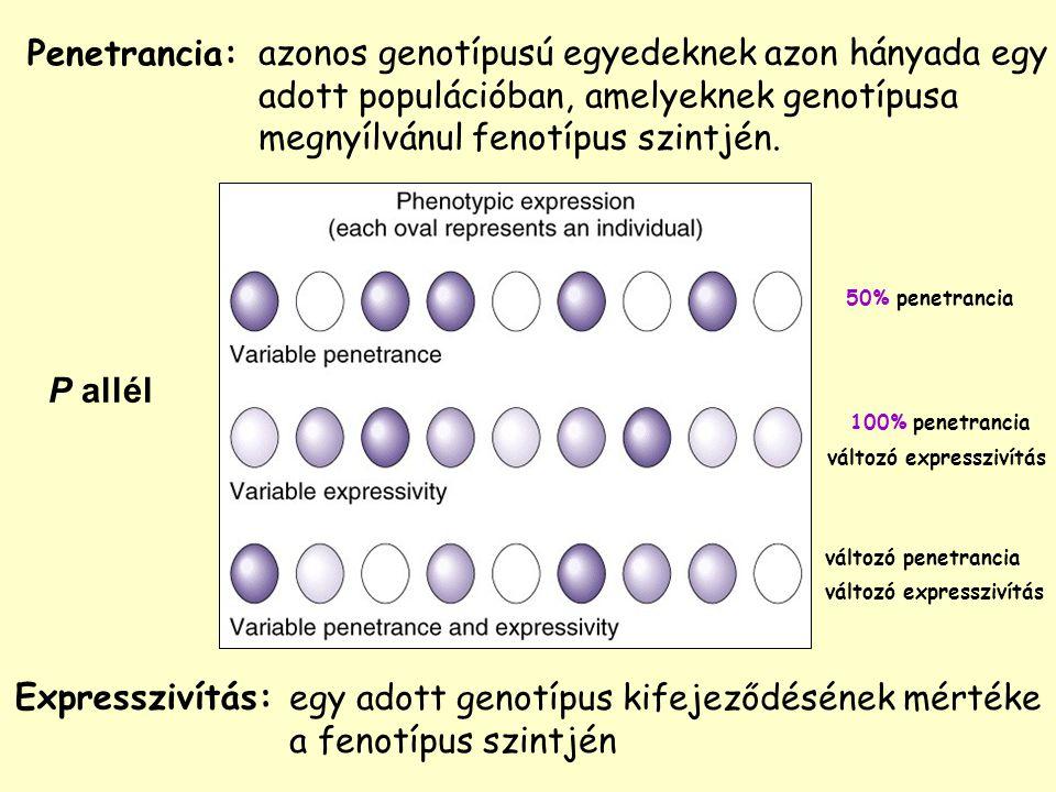 Expresszivítás: azonos genotípusú egyedeknek azon hányada egy adott populációban, amelyeknek genotípusa megnyílvánul fenotípus szintjén.