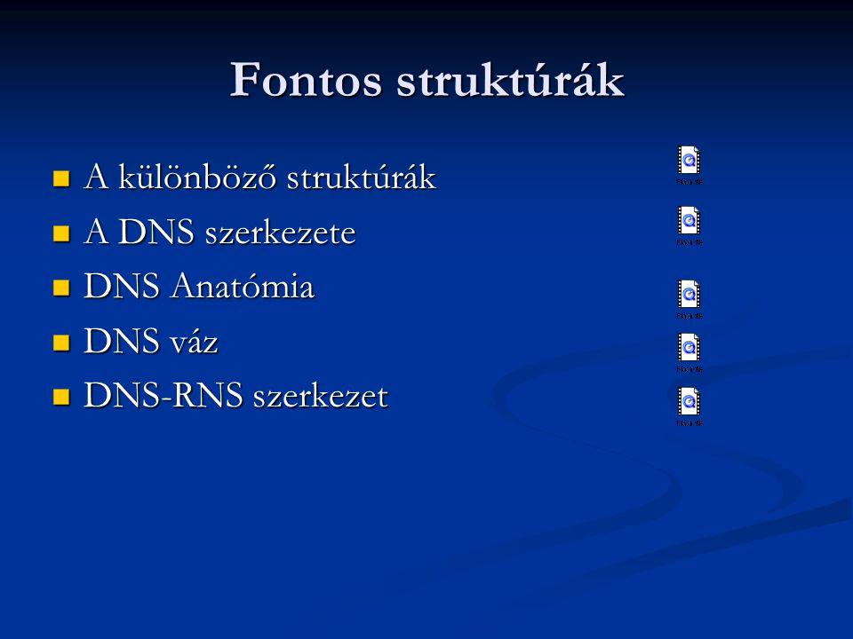Fontos struktúrák A különböző struktúrák A különböző struktúrák A DNS szerkezete A DNS szerkezete DNS Anatómia DNS Anatómia DNS váz DNS váz DNS-RNS sz