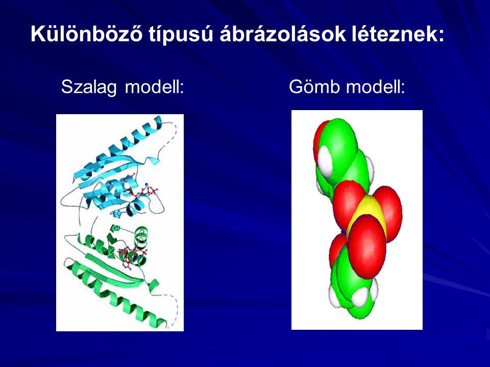 Különböző típusú ábrázolások léteznek: Szalag modell:Gömb modell: